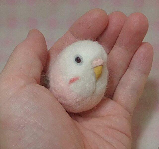 ☆選べる2タイプ☆ セキセイインコ 夢色♪ピンク 羊毛の小鳥☆選べる鼻の色の画像1枚目