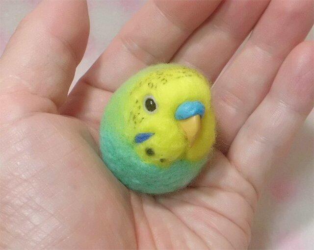 ☆選べる2タイプ☆ コロコロ♪ 羊毛の小鳥  セキセイ ミントグリーンオパーリン☆選べる鼻の色の画像1枚目