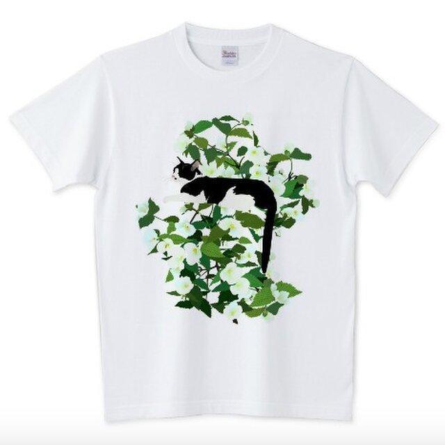 065 cissola Tシャツ【男女兼用タイプ】の画像1枚目