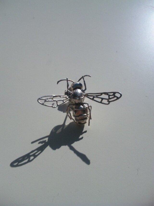 スズメバチの画像1枚目
