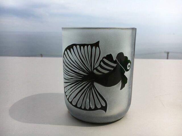 王様金魚のグラスの画像1枚目