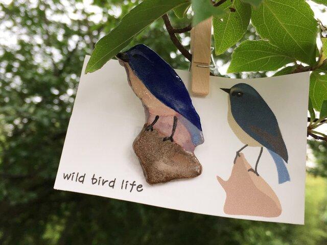 wild bird life ブローチ ルリビタキの画像1枚目