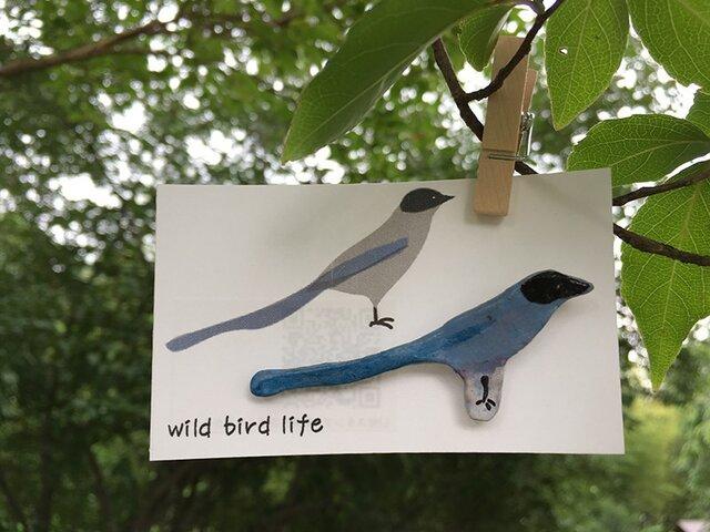 wild bird life ブローチ オナガの画像1枚目