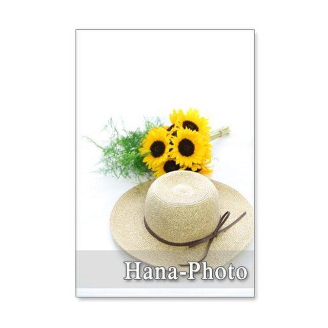 1123) ヒマワリ 2   ポストカード5枚組の画像1枚目