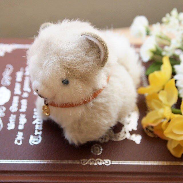 【再販】ちいさなぬいぐるみ青い瞳のハスキー子犬の画像1枚目