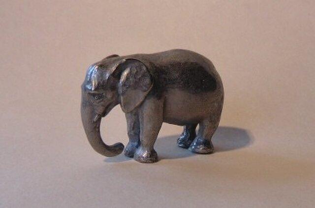 象の画像1枚目