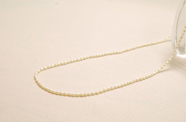 【送料無料】silver925 淡水パールライス ネックレスの画像1枚目