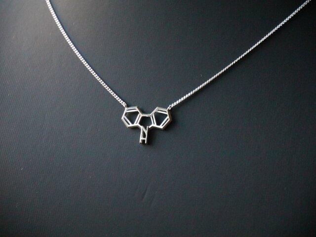 化学式®アクセサリー ネックレスの画像1枚目
