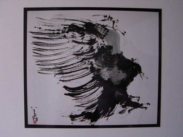 狙う鷹の画像1枚目