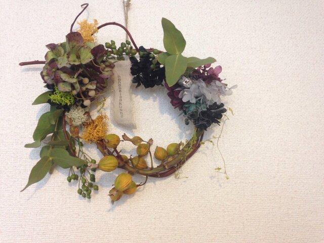 秋の花のあとの物語りの画像1枚目