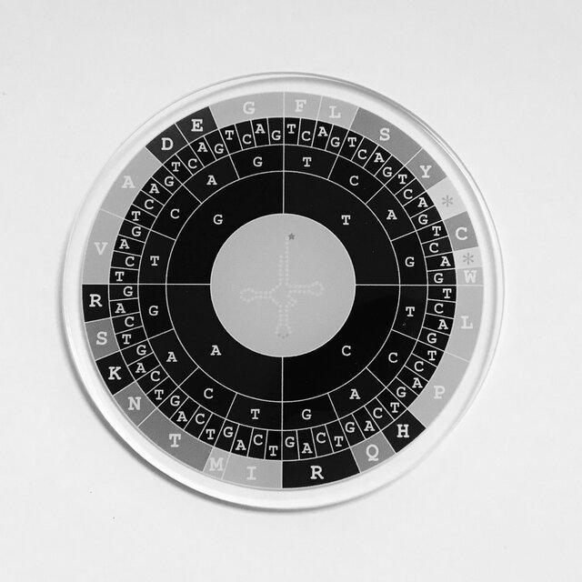 コドン表のコースターの画像1枚目